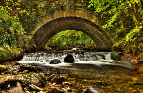 This image was taken just outside Killarney at the foot of Torc Waterfall as it passes under the N71, Co. Kerry in late summer. A really beautiful location. This Photo consists of 25 images